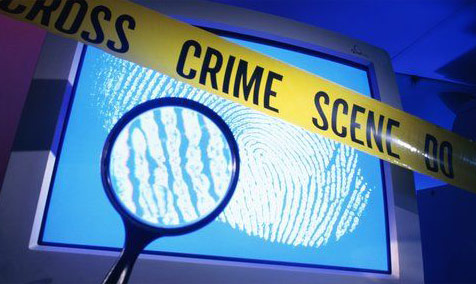 criminal investigation unit 5 assignment final Defendant's criminal  certain information from the defendant needed to complete the presentence investigation assignment  the presentence investigation report 5.